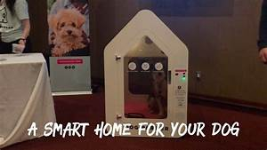let39s look at dog parker a smart home for your dog With smart dog house