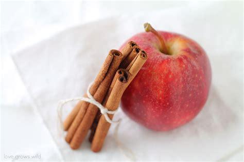 alternative to kitchen apple cinnamon baked oatmeal grows