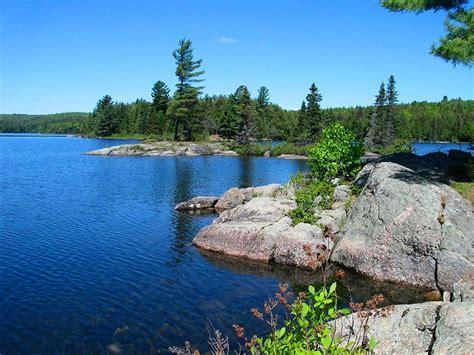 AlgonquinAdventures.com   Lake louisa Campsite #18