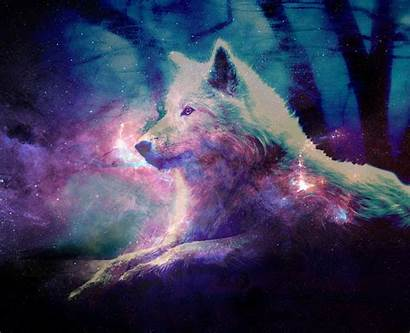 Wolf Galaxy Wallpapers Wolves Animal Wallpapersafari Lobos