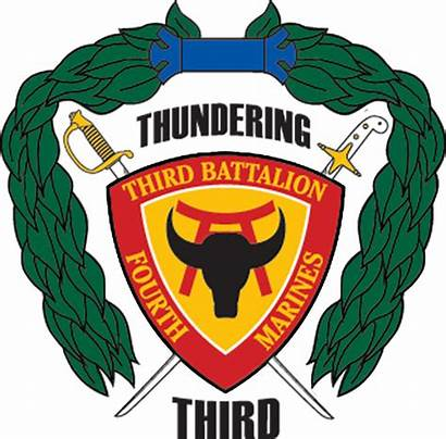 Battalion Marines 4th 3rd Insignia Corps Infantry