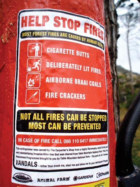 prevent forest fires design indaba