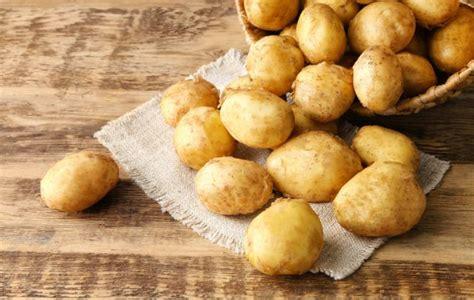 coltivare patate in vaso come coltivare le patate in vaso non sprecare