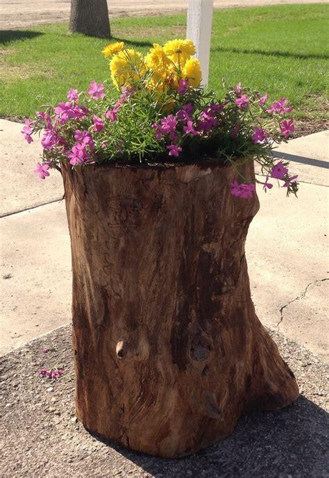 tree stump planters tree stump planter summer gardening yard ideas