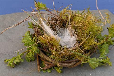 Making bird nests - Sensory Trust