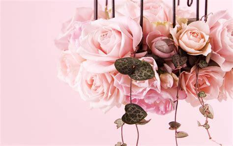 immagine fiore rosa recensioni cosmetiche marzo 2015