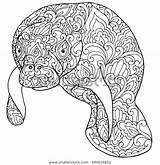 Manatee Coloring Pages Zentangle Cow Printable Doodle Sea Adult Shutterstock Patterned Fantasy Vector Drawing Background Isolated Head Print Detailed Animal sketch template