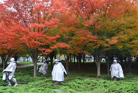 fall colors  washington dc claudia looi