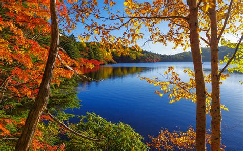 Autumn Lake Wallpapers by Trees Autumn Lake Hd Wallpaper Nature And Landscape