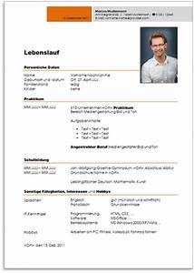 Lebenslauf Online Bewerbung : professionellen lebenslauf erstellen lebenslauf beispiel ~ Orissabook.com Haus und Dekorationen