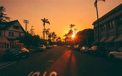 Street Palm Sunset Trees Road Cars Signs