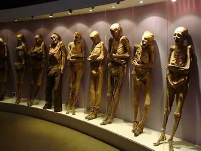 Guanajuato Mummies Mummy Museum Mexico Bodies Momias