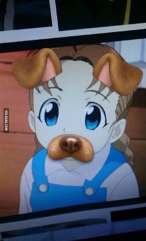 Nina Tucker Memes - 58 best images about fullmetal alchemist on pinterest alchemy fullmetal alchemist edward and