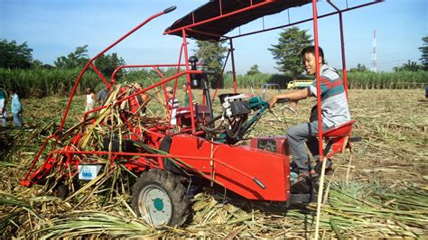 demo mesin panen tebu santoso advance agricultural machinery