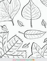 Coloring Printable Fall Leaves Pages Thanksgiving Cascading Printables Crafts Paper Allfreepapercrafts Superhero Cards sketch template