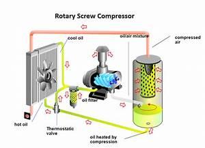 Screw Compressors Working Principle