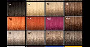 Hair Color Level Chart Joico Vero K Pak Chrome Colour Palette Color Charts
