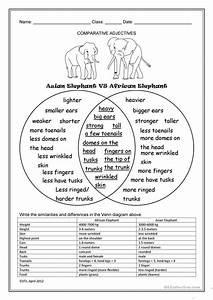 Asian Elephant Vs African Elephant Worksheet