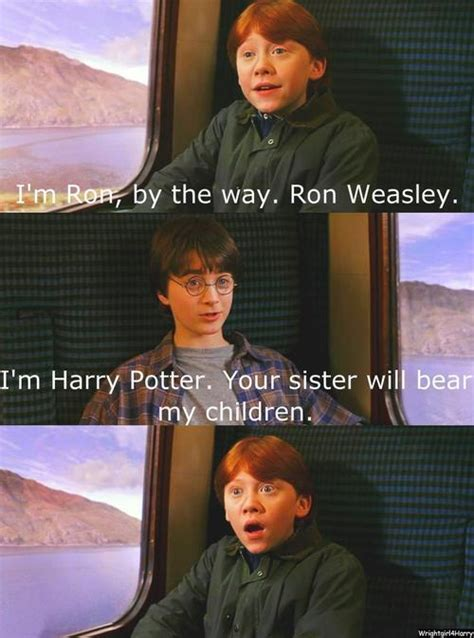 Harry Potter Trolley Meme - funniest harry potter quotes quotesgram