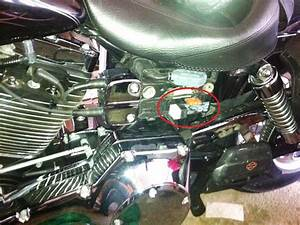 Harley Touring Fuel Pump Wiring Harness