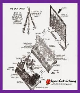 Southern California Garden Guide