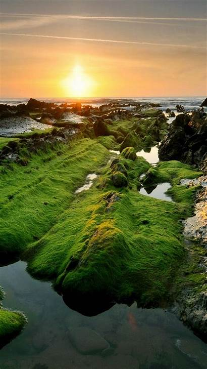 Android Screensaver Resolution Wallpapers Nature February