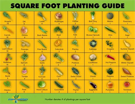 square foot planting guide vegetable garden plan per