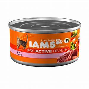 P&G Recalls Specific Iams Canned Cat and Kitten Foods Due ...