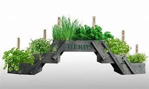 Herbes Aromatiques En Pot : mini jardin herbes aromatiques groupon shopping ~ Premium-room.com Idées de Décoration