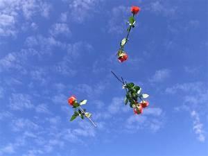 Bilder Vom Himmel : f r uns soll 39 s rote rosen regnen vitanas ~ Buech-reservation.com Haus und Dekorationen
