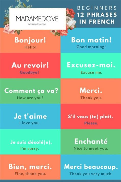 The 25+ best Beginners french ideas on Pinterest