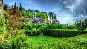 Trees Flowers Garden Beautiful Nature Flower Hd Wallpapers ...
