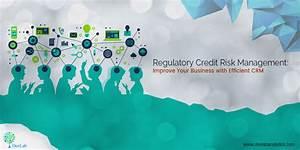 Regulatory Credit Risk Management: Improve Your Business ...