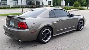 2002 Mustang GT Premium 5 Speed - MustangForums.com