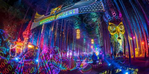 electric forest adds   artists  lineup edmtunes