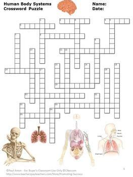 human body systems middle school science vocabulary