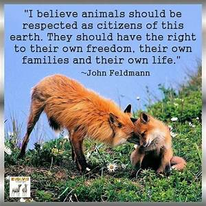 U0026quot I Believe Animals Should Be Respected As Citizens Of This