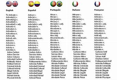 Cognates Spanish Dictionary Words English Cognate Translation