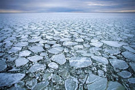 流氷 ツアー