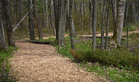 schlitz audubon nature preschool schlitz audubon nature ce 914 | hiking trails schlitz audubon