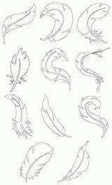 Coloring Feathers Turkey Coloringhome Clrg sketch template