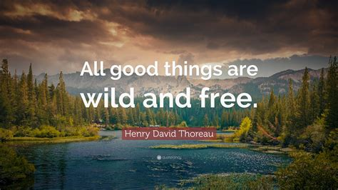 nature quotes  wallpapers quotefancy