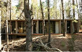 Amazing Concrete House Plan For A Rustic Forest Home In Argentina House With Wood Look Concrete Covering Modern House Designs The Building Had To Be A Small Tower Like A Gatekeeper S House Rough Stone Exposed Concrete Warm Timbers And Polished Concrete