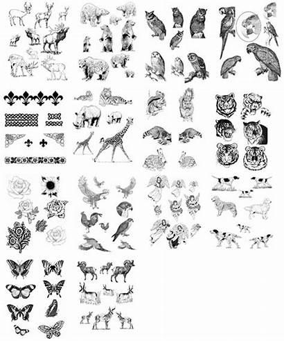 Patterns Carving Artbook