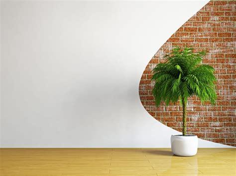 Hängende Pflanzen Wohnung pflanzen machen die wohnung komplett moebeltipps ch