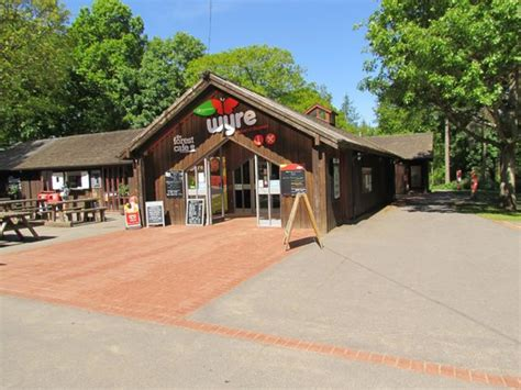 visitors centrecafe picture  wyre forest bewdley