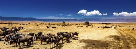 Ngorongoro Crater in Tanzania - Bookmundi.Com