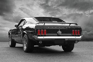 Rear Of The Year - '69 Mustang Photograph by Gill Billington