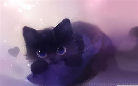 kitty loves fish  hd desktop wallpaper   ultra hd