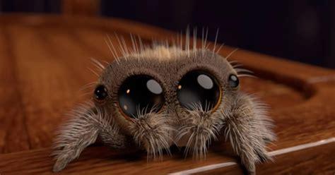 adorable animated spider    arachnophobes smile